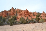 redcanyon1.jpeg