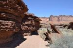 canyonlandmurphyloop4.jpeg