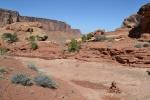 canyonlandsynclineloop1.jpeg