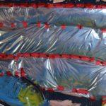 escargot horizon transition