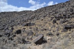 petroglyphpark-rinconadacanyon.jpeg