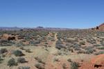 canyonlandmurphyloop2.jpeg